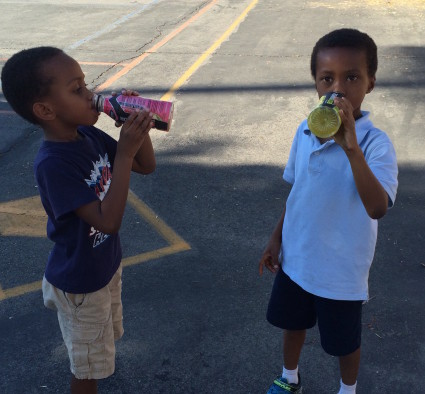 Body Armor Sports Drink: A Healthy Beverage for the Entire Family!